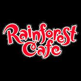 Rainforest Cafe Interview